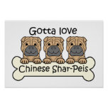 Three Chinese Shar-Peis Poster