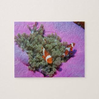 Three Clown Fishes on Sea Anemone, Andaman Sea Jigsaw Puzzle