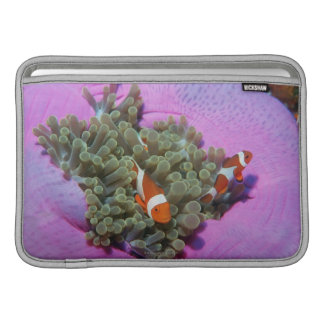 Three Clown Fishes on Sea Anemone, Andaman Sea Sleeve For MacBook Air