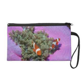 Three Clown Fishes on Sea Anemone, Andaman Sea Wristlet Purse