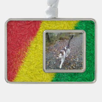 Three colored furry pattern silver plated framed ornament