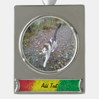 Three colored furry pattern silver plated banner ornament