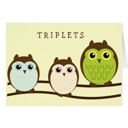 Three Colorful Owls Greeting Card