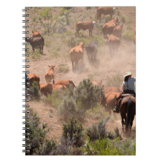 Three cowboys and cowgirls driving cattle notebook