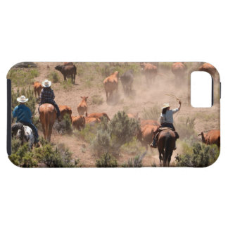 Three cowboys and cowgirls driving cattle tough iPhone 5 case