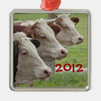 Three Cows in a Row Ornament