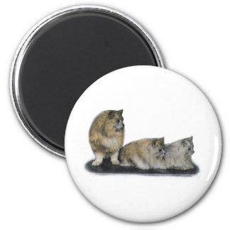 Three Curious Persian Cats Artwork 6 Cm Round Magnet