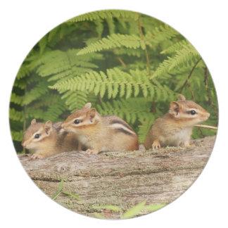 Three Cute Baby Chipmunks Party Plates