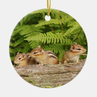 Three Cute Baby Chipmunks Round Ceramic Decoration