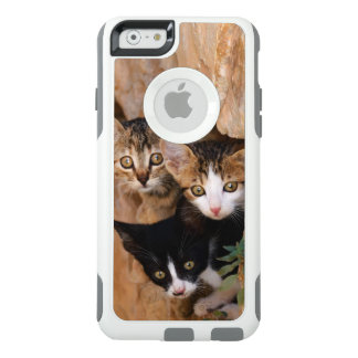 Three Cute Curious Cat Kittens Photo - protective OtterBox iPhone 6/6s Case