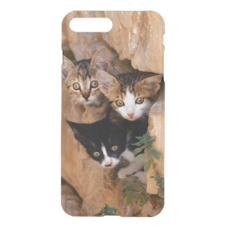 Three Cute Curious Kittens, Photo Phonecover iPhone 7 Plus Case