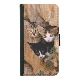 Three cute curious kittens samsung galaxy s5 wallet case