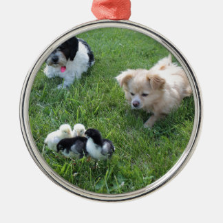 Three cute dogs in grass Silver-Colored round decoration