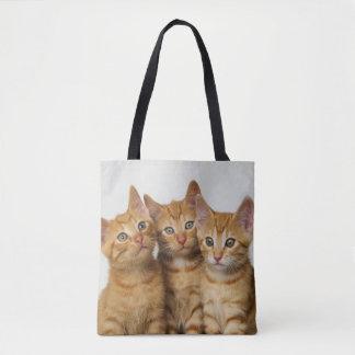 Three Cute Ginger Cat Kittens Photo -  on Shopper Tote Bag