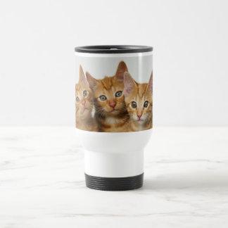 Three cute ginger kittens side by side travel mug