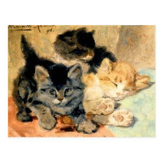 Three cute Kittens - Ronner Postcard