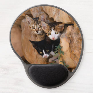 Three cute prying kittens gel mouse pads