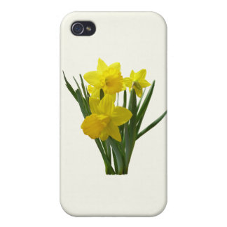 Three Daffodils Standing Guard iPhone 4/4S Cases