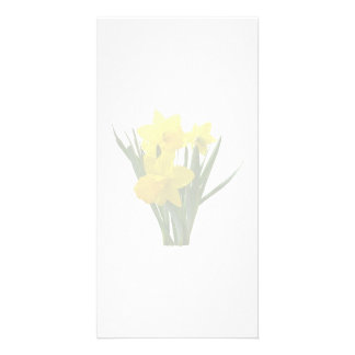 Three Daffodils Standing Guard Picture Card