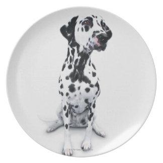 Three Dalmatians Plate