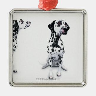 Three Dalmatians Silver-Colored Square Decoration