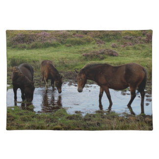 Three Dartmoor Ponies Drinking At Watering Hole Placemat