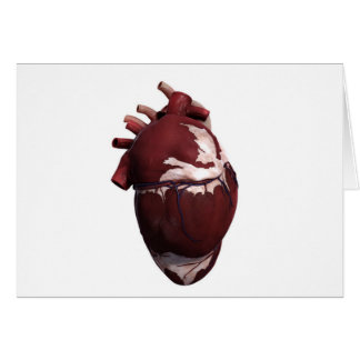 Three Dimensional View Of Human Heart, Left Side Card