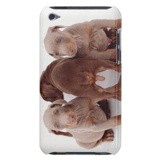 Three Doberman pinscher puppies iPod Case-Mate Cases