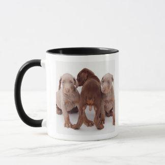Three Doberman pinscher puppies Mug