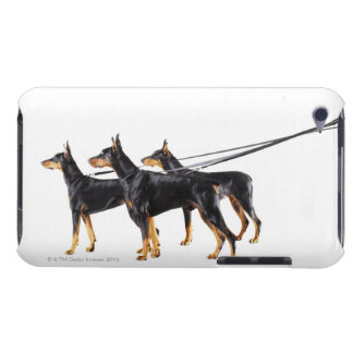 Three Dobermans on leash Barely There iPod Cases