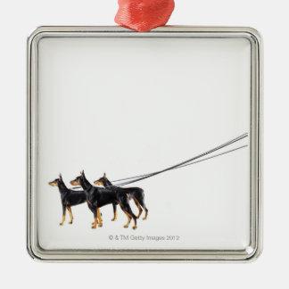 Three Dobermans on leash Christmas Ornament