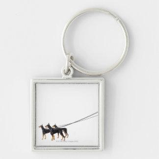 Three Dobermans on leash Key Ring