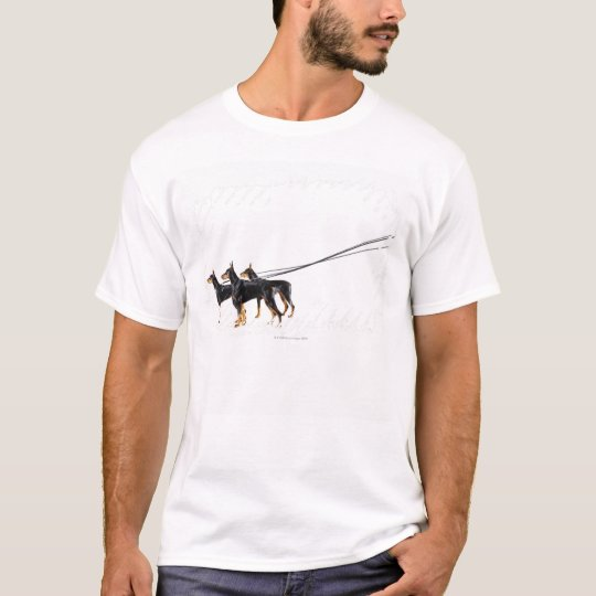 Three Dobermans on leash T-Shirt