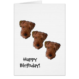 Three dog night birthday card