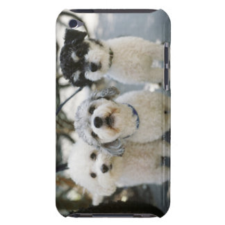 Three dogs iPod touch covers