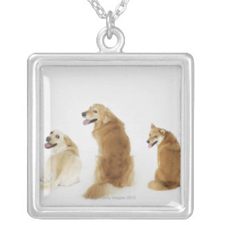 Three dogs looking at camera square pendant necklace