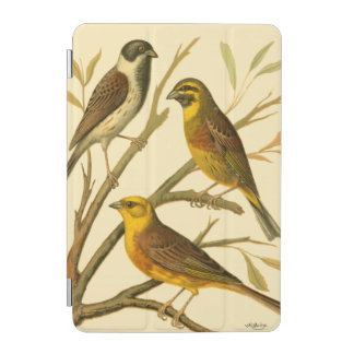 Three Domestic Birds Perched on a Branch iPad Mini Cover