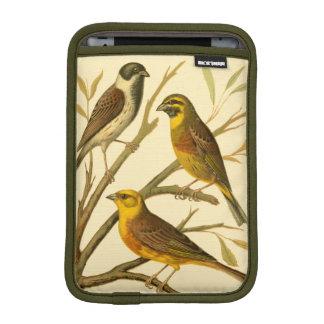 Three Domestic Birds Perched on a Branch iPad Mini Sleeve