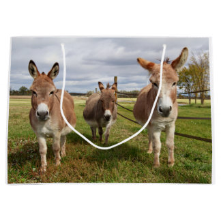 Three Donkey's Large Gift Bag