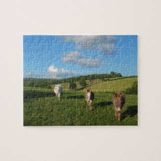 Three Donkeys in a Field Jigsaw Puzzle