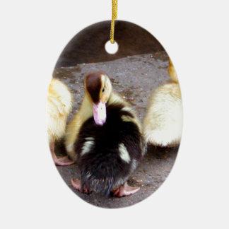 Three ducklings christmas ornament