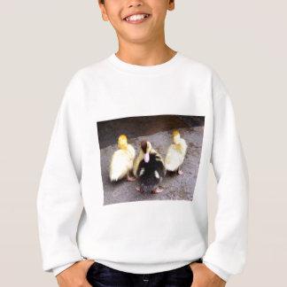 Three ducklings sweatshirt