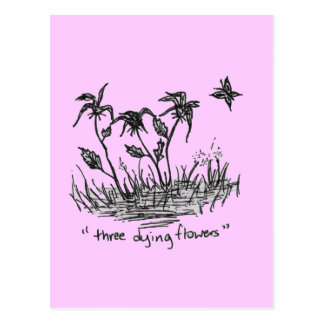 Three Dying Flowers Postcard