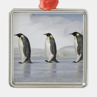 Three Emperor Penguins, Snow Hill Island Christmas Ornament