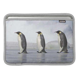 Three Emperor Penguins, Snow Hill Island MacBook Air Sleeve