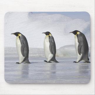 Three Emperor Penguins, Snow Hill Island Mouse Mat