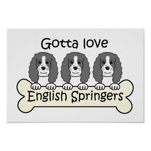 Three English Springer Spaniels Poster