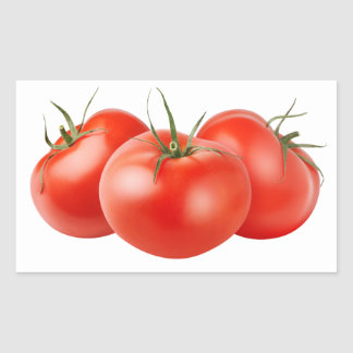 Three fresh tomatoes rectangular sticker