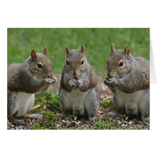Three Friends Gossiping Card