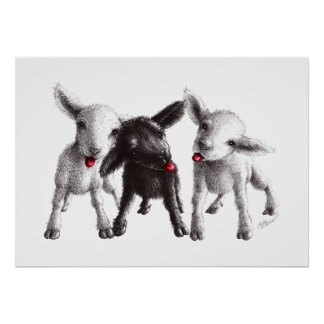 Three Funny Cheeky Sheep Poster